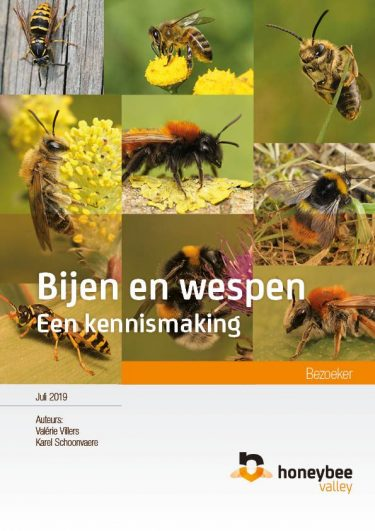 Ks Vv Bijwesphommel Cover