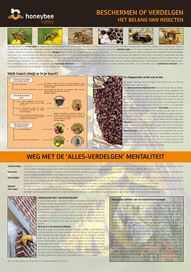 Beschermen of verdelgen Het belang van Insecten