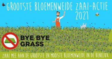 Grootste Bloemenweide Benelux 2021