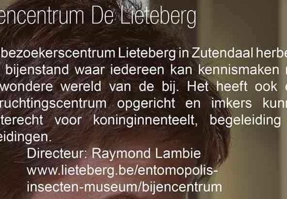 Bijencentrum De Lietenberg