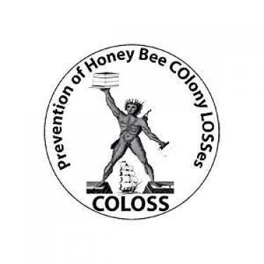 Coloss Logo 200Px