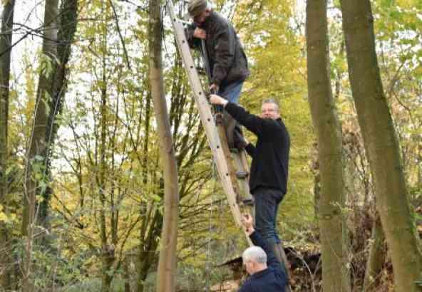 Om de lans in positie te brengen en op zijn plaats te houden is behendigheid en teamwork vereist. Na twee uur lukt het met behulp van een extra ladder en geïmproviseerd (houten stok) verlengstuk het nest te verdelgen.