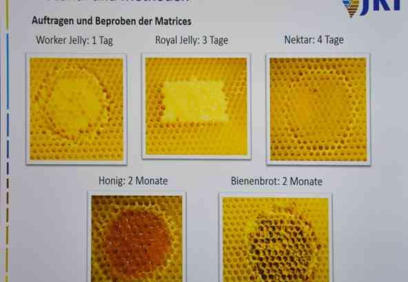 Waswafels met gekende concentraties aan acariciden werden gebruikt om de verschillende matrici van een bijenvolk in te stockeren.