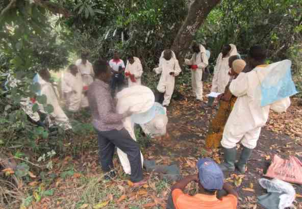 Imkers tijdens een training door Felicien Amakpe in Benin.