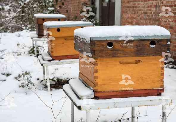 Hbv Foto 034: bijenkasten in de sneeuw